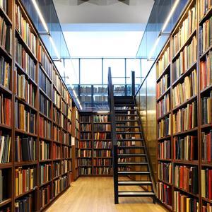 Библиотеки Шемышейки