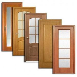 Двери, дверные блоки Шемышейки
