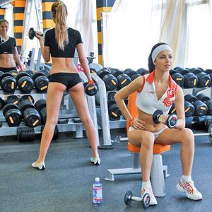 Фитнес-клубы Шемышейки