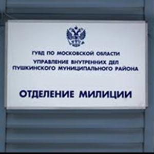 Отделения полиции Шемышейки