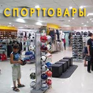 Спортивные магазины Шемышейки